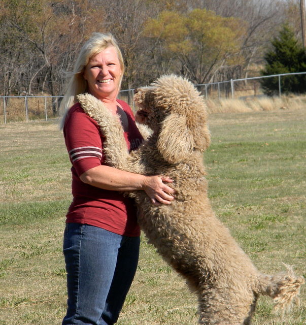 Hunting Dog Training Okc